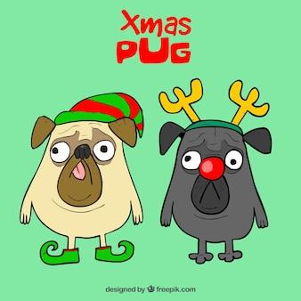 Śmieszne pugs z kostiumami świątecznymi