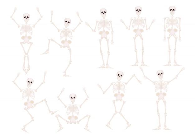 Śmieszne szkielety taniec i gimnastyka na białym tle