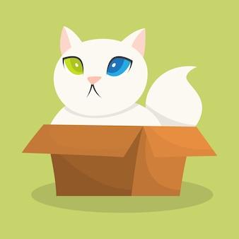 Śmieszny kot siedzi w pudełku tekturowym.