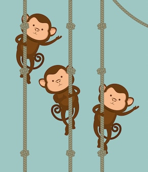 Śmieszny małpi projekt