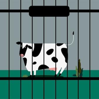 Smutna krowa zwierząt gospodarskich w niewoli