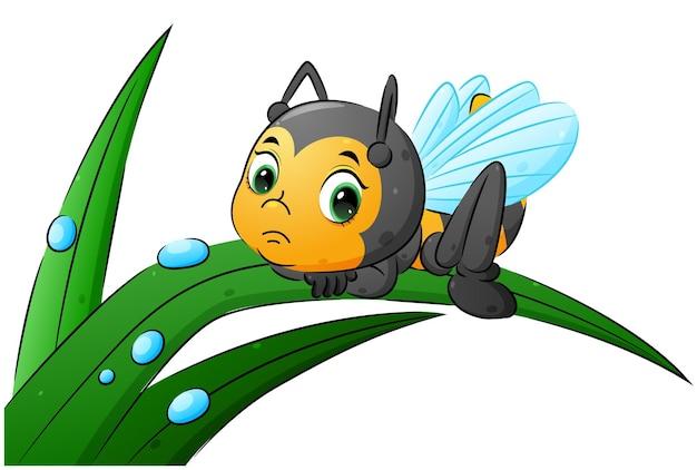 Smutna pszczoła leży na liściu z ilustracyjnym ornamentem w postaci kropli wody