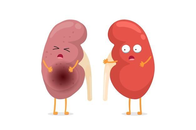 Smutne cierpiące chore i słodkie zdrowe zdumienie, które przeżyły postacie nerek. porównanie anatomii człowieka układu moczowo-płciowego wewnętrzny niezdrowy płacz i silny narząd. ilustracja kreskówka wektor