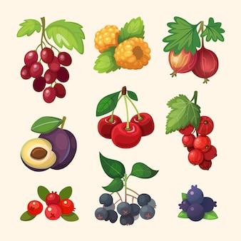 Soczyste kolorowe jagody zestaw do etykiety. ilustracje do książki kucharskiej lub menu.