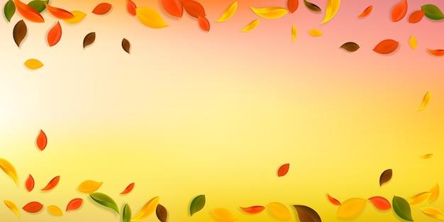 Spadające jesienne liście. czerwone, żółte, zielone, brązowe, chaotyczne liście latające. winieta kolorowe liście na eleganckim białym tle. urocza wyprzedaż z powrotem do szkoły.