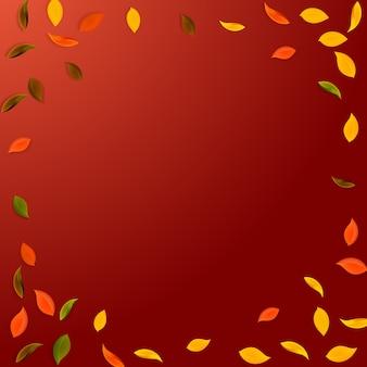 Spadające jesienne liście. czerwone, żółte, zielone, brązowe latające losowo liście. winieta kolorowe liście na popularnym czerwonym tle. świetna wyprzedaż z okazji powrotu do szkoły.