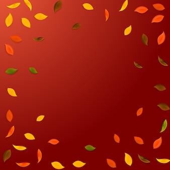 Spadające jesienne liście. czerwone, żółte, zielone, brązowe latające losowo liście.