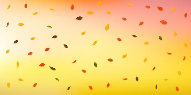 Spadające jesienne liście. czerwone, żółte, zielone, brązowe losowo lecące liście. spadający deszcz kolorowe liście na optymalnym białym tle. urzekająca wyprzedaż z powrotem do szkoły.