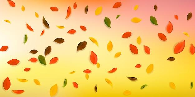 Spadające jesienne liście. latające chaotyczne liście czerwone, żółte, zielone, brązowe. spadający deszcz kolorowe liście na nieusuwalnym białym tle. urzekająca wyprzedaż z powrotem do szkoły.