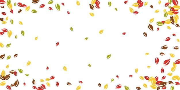 Spadające jesienne liście. latające chaotyczne liście czerwone, żółte, zielone, brązowe. winieta kolorowe liście na niezwykłym białym tle. piękna wyprzedaż z powrotem do szkoły.