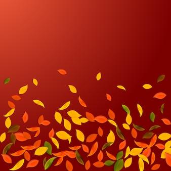 Spadające jesienne liście. liście chaotyczne czerwone, żółte, zielone, brązowe latające. gradientowe kolorowe liście