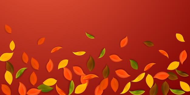 Spadające jesienne liście. liście czerwone, żółte, zielone, brązowe, latające. padający deszcz kolorowe liście na atrakcyjnym czerwonym tle.