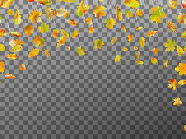 Spadające jesienne liście.