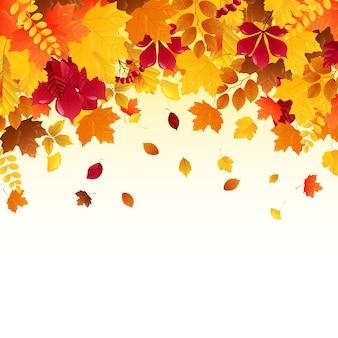 Spadające jesienne liście
