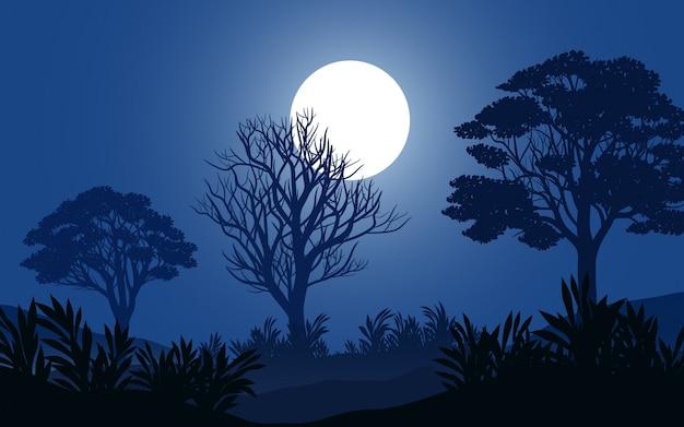 Spokojna noc w lesie przy pełni księżyca