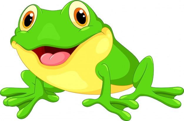 Sprytny, żaba, rysunek