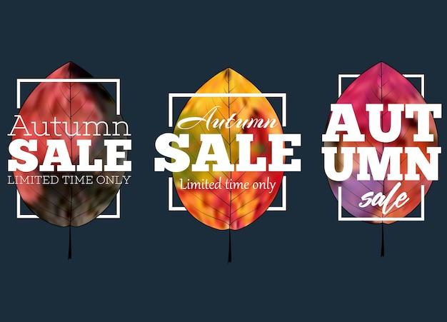 Sprzedam baner z kolorowych liści jesienią. promocja z rabatem na zakupy.