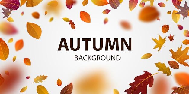 Sprzedam projekt plakatu na jesień z liśćmi nie opadającymi pięknie na tle