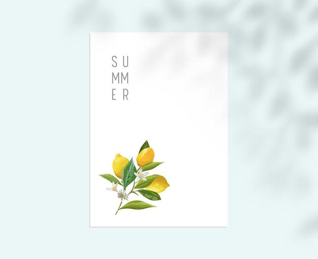 Stacjonarny szablon z owocami cytryny, liśćmi i kwiatami na białej kartce papieru. lato botaniczny wzór tła z gałęzi drzewa cień, tożsamość marki firmy korporacyjnej. ilustracja wektorowa
