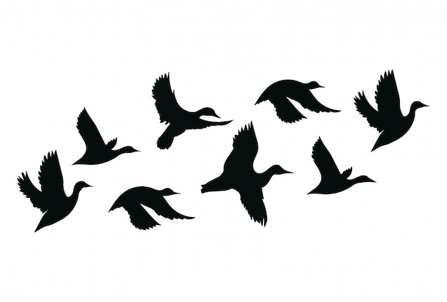 Stado kaczek stado kreskówek ptaków. ilustracja latających ptaków.