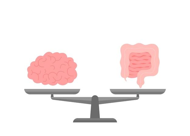 Stan połączenia i równości jelit i mózgu na skali stan relacji między mózgiem a jelitami