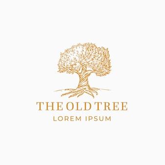 Stare drzewo streszczenie znak, symbol lub szablon logo.