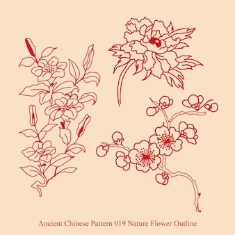 Starożytny chiński wzór konspektu kwiat przyrody