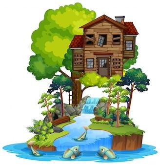 Stary drewniany domek na drzewie na wyspie