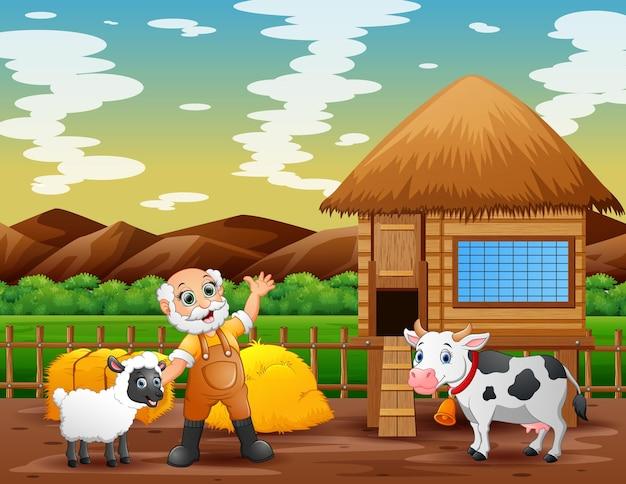 Stary rolnik i zwierzęta na polach uprawnych
