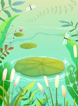 Staw bagno lub sceneria jeziora z roślinami lilii i lilii, trawami i trzcinami
