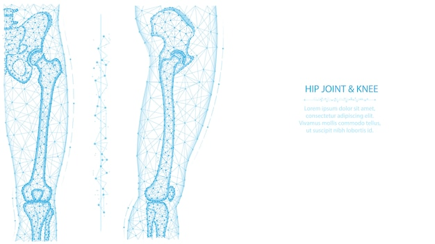 Staw biodrowy i kolano widok z przodu i boku wielokąta. koncepcja anatomii nóg i miednicy. projekt medyczny streszczenie low poly