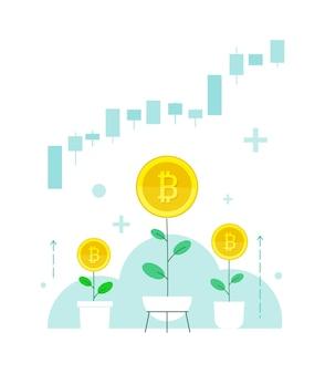 Stawka bitcoina kryptowaluty rośnie. cena rośnie, dywidendy rosną. zainwestuj w handel na giełdzie z domu.3 rośliny w domowych doniczkach jako metafora podnoszenia kapitału własnego domu.