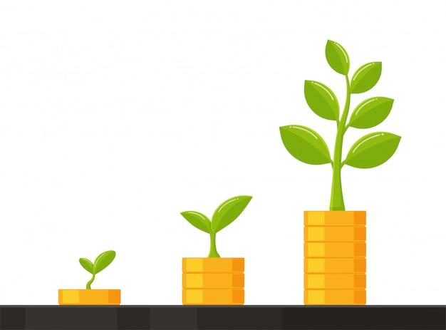 Stos monet rośnie wraz z drzewem pomysłów na rozwój biznesu, oszczędzając pieniądze na przyszłość.