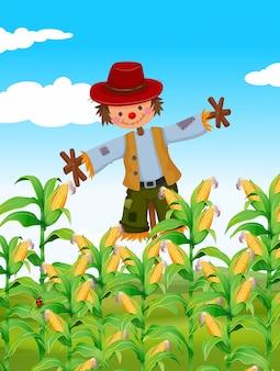 Strach na wróble stoi w polu kukurydzy