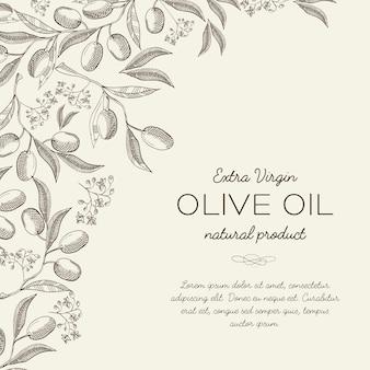 Streszczenie botaniczne światło z tekstem i eleganckimi gałązkami drzewa oliwnego w stylu grawerowania