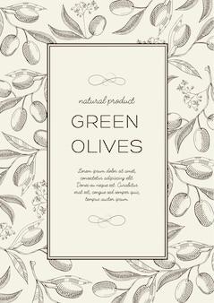 Streszczenie botaniczny naturalny plakat z tekstem w ramce prostokątnej i gałązkami oliwnymi w stylu grawerowania