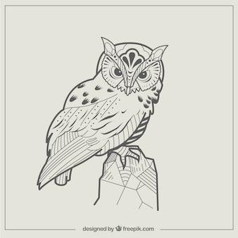 Streszczenie ilustracja sowa