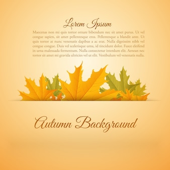 Streszczenie kolorowy plakat sezonu jesiennego