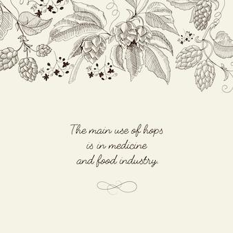 Streszczenie lekki kwiatowy plakat botaniczny z tekstem i piwnymi gałązkami chmielu ziołowego w stylu szkicu