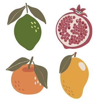 Streszczenie owoców tropikalnych zestaw elementów tropikalnych boho na białym tle ilustracji wektorowych