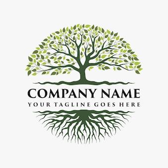 Streszczenie żywe drzewo projektowanie logo