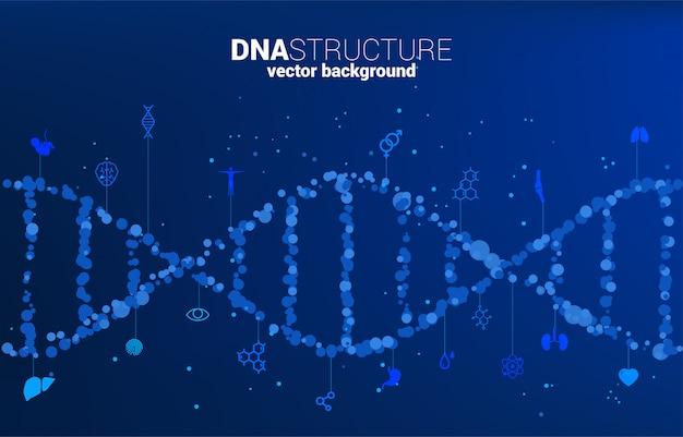 Struktura genetyczna dna wektor z losowej kropki z ikoną. koncepcja tła dla biotechnologii i biologii naukowej.