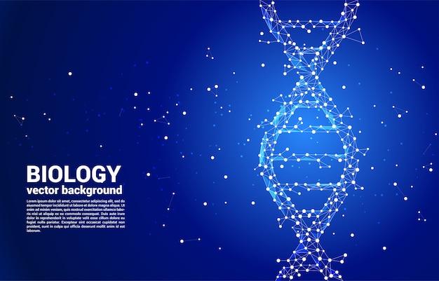 Struktura genetyczna dna wektora z kropki łączy wielokąt linii. koncepcja tła naukowego biotechnologii i biologii.