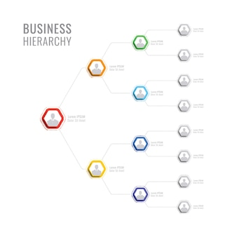 Struktura organizacyjna firmy. hierarchia biznesu infographic elementy heksagonalne.