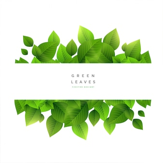 Stylowe zielone liście z przestrzenią tekstową