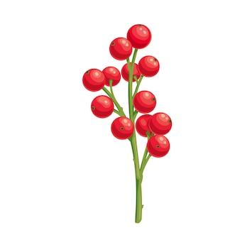 Świąteczna dekoracja gałązki ostrokrzewu z jagodami