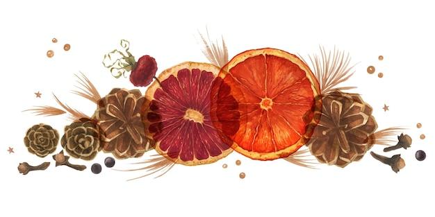 Świąteczna kompozycja akwarelowa z pomarańczami, szyszkami i jagodami na białym tle