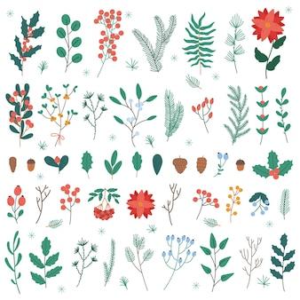Świąteczne rośliny i kwiaty. boże narodzenie i nowy rok ferie zimowe ozdoba liście, kwiaty i jagody wektor zestaw ilustracji. boże narodzenie elementy kwiatowe kwiat i jagody na białym tle dla karty