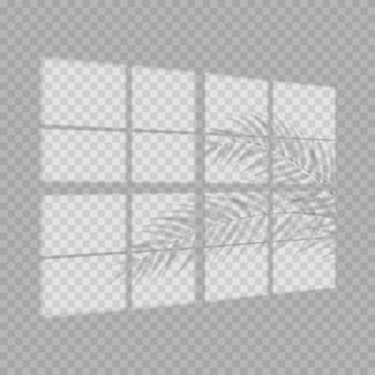 Światło i cień okna realistyczne