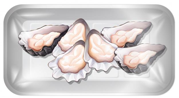 Świeża ostryga w pojemniku
